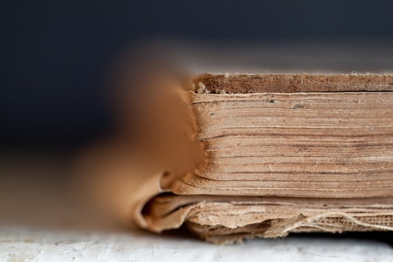 Time Travel Fine Art Photography Rustic Shabby texture Home Library Decor Tattered worn well loved book dreamy fantasy launcher taupe shades