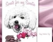 Bichon Frise Valentine's Day Card