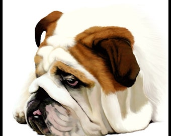 Old English Bulldog - 10x10in portrait