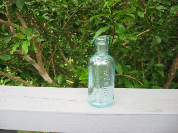 MEXICAN MUSTANG LINIMENT LYON MFG. CO. NEW YORK Antique Bottle