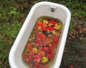 Bathtub Photograph
