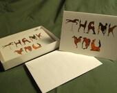 Horse Alphabet Thank-you cards