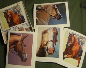 Magnificent Horses card assortment