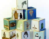 Animal Alphabet blocks - set of 9