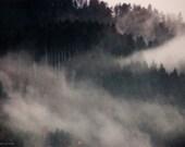 Modern Foggy Landscape Fine Art Photography Print White Fog in Black Forest Gift for Him for Her for Friend-  Flying Forest