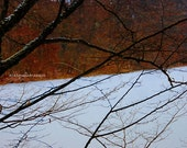 Modern Winter Fine Art Photography Print - White Rust Black Silver - Gift for Him For Her for Friend - Passage