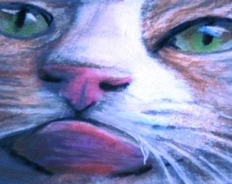 ACEO Original art drawing cat licker