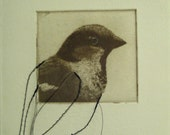original etching of a bird, hand pulled