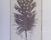 Original Etching of a spotted feather,hand pulled