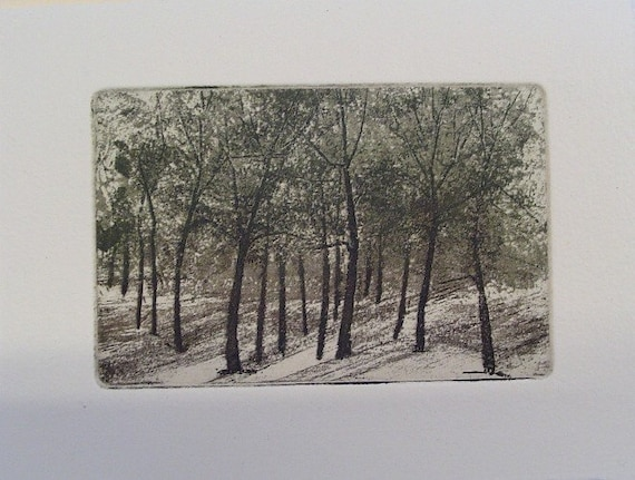 original etching of a landscape,hand pulled