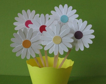 Daisy Cupcake Toppers - Rainbow Centered (12CT)