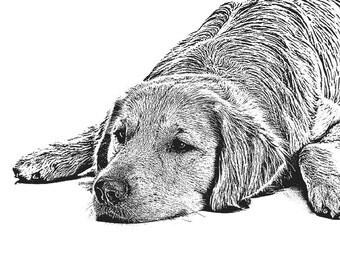 Custom Pet Portrait - 11 X 14