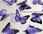 3D Butterflies in Lilac Pastel Light Purple Lavender 12x