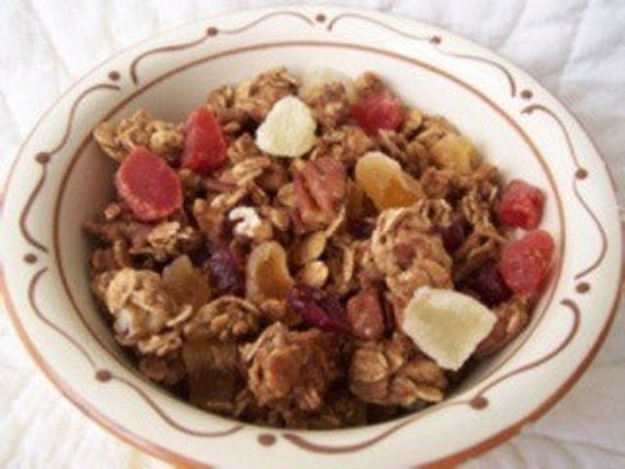 Lolly Doodle Surprise Pineapple Cranberry Pecan Granola with Mixed Fruit- The Very Best. 8 ounces.