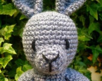 Rosie Rabbit pdf