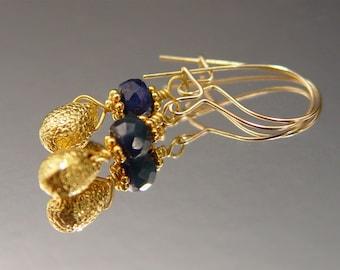 Blue Sapphire and 18 Karat Gold Drops