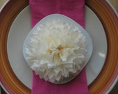Napkin Pom Poms - Fully Fluffed Pick your colors - Table decoration Party name cards