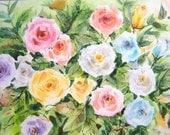 Free Shipping - Garden Roses (Original Watercolor Painting)