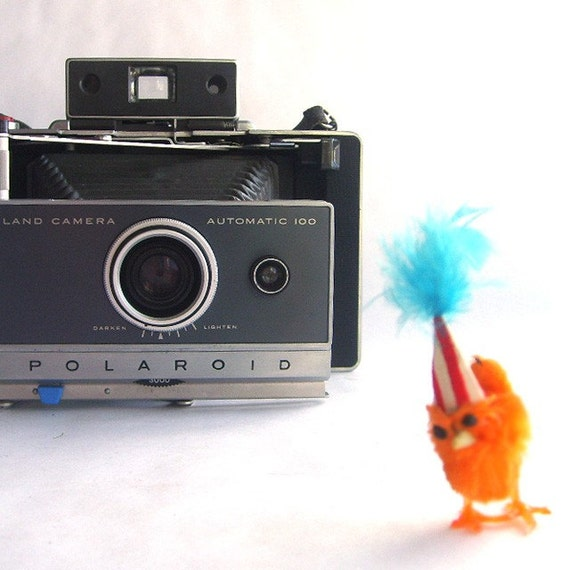 Vintage Accordion Style Polaroid Land Camera