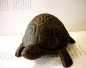 Hand Painted Cast Iron Turtle