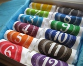 Squiggle Solid Monthiversaries - Set of 12 Bodysuits
