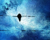 Birds on a wire- original oil painting ,20x6 inch