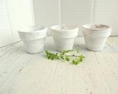 Three Small White Flower Pots