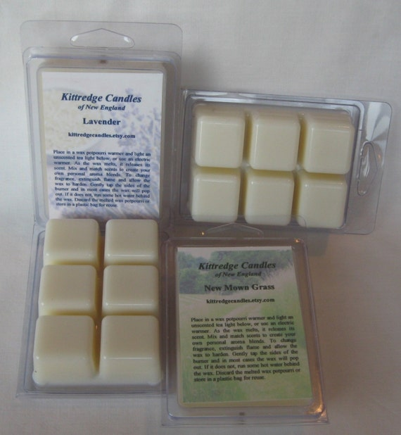 CLAMSHELL BREAKAWAY TARTS  (4 packs in your choice of scents)