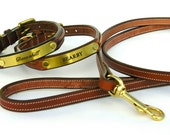 Custom Leather ( Brass Plate ) Dog Collars