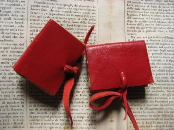 mini book magnets, red