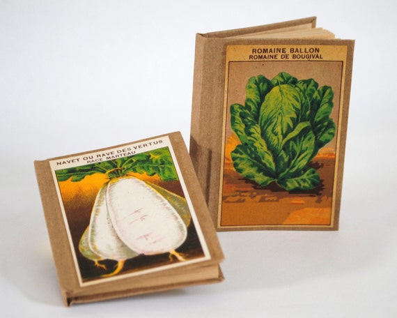Set of 2 Mini books - Romaine Lettuce and Turnips - The Vegetables Collection