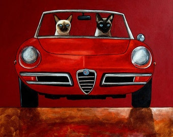 152 Alfa Giulia Spider Duetto and Siamese cats driving car - print 21x21cm/8.5x8.5""