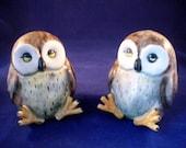 Vintage Grey Owl Salt and Pepper Shakers (Cute)