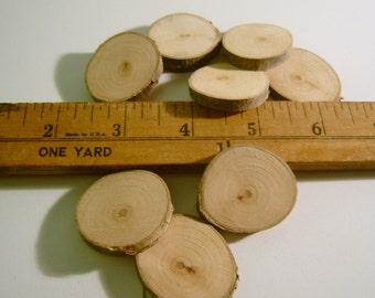 10 Small Round Wooden Tree Branch Slices 1 inch