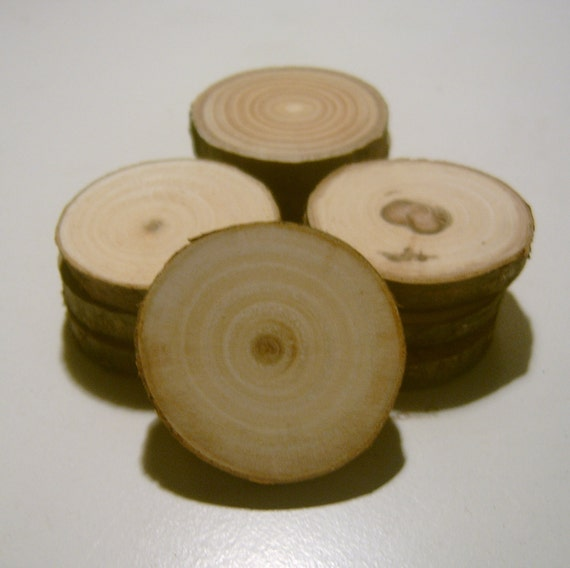 50 Tree Branch Slices 1.5 inch Wooden Craft Circles Blanks