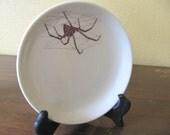 Black Widow Spider Dish
