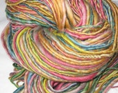BOGO SALE... Read Store info for Details - CIRCUS, CIRCUS - Handspun Merino Yarn