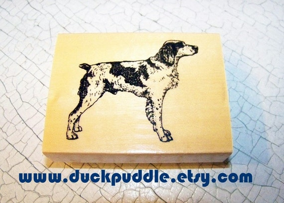 Brittany Spaniel new mounted Rubber Stamp rubberstamp hardwood maple mount