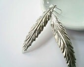 Silver feather earrings. Long bright silver feather earrings on sterling silver ear wires.