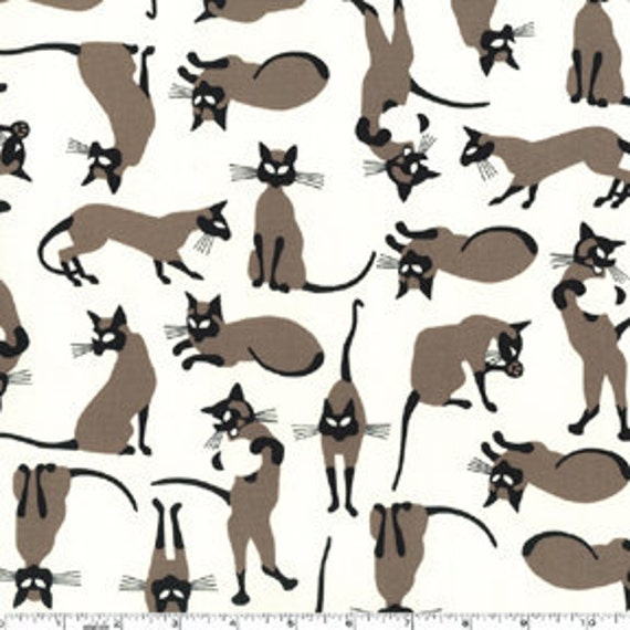 We are Siamese Cats Cream Michael Miller Fabric 1 yard, yardage available
