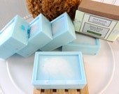 SALE  STRESS RELIEF Spearmint and Eucalyptus All Natural Soap