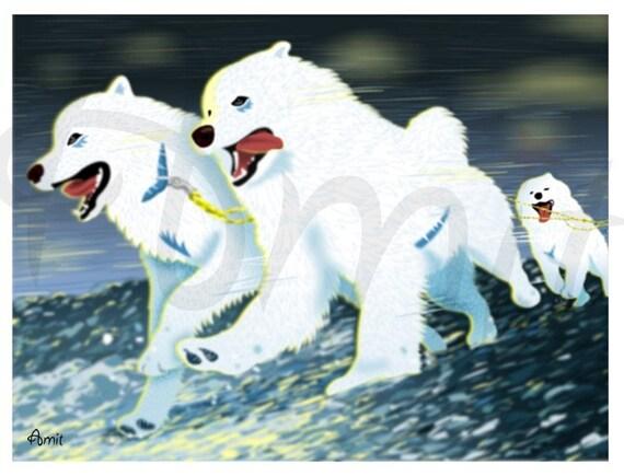 Samoyed team