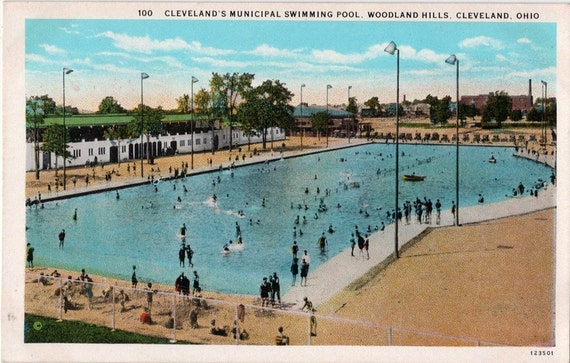 Vintage Ohio Postcard Swimming In The Woodland By Vintageplum