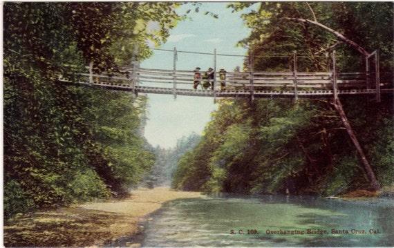 Vintage California Postcard - Swinging Bridge, Santa Cruz (Unused)