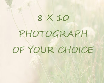Photography - 8 x 10 - Pick Your Photo - Nature Print