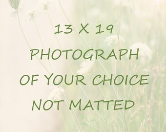 Photography - 13 x 19 - Pick Any Photo - Nature Print