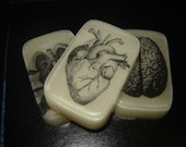 HAVE A HEART, Soap Bar, RAYGUN scented, orange, grapefruit, tangerine, lime