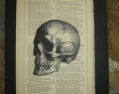 YORICK'S SKULL- 1877 Antique page - WILLIAM SHAKESPEAR'S script - Free Shipping