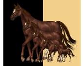 Chestnut Horses Custom Shower Curtains