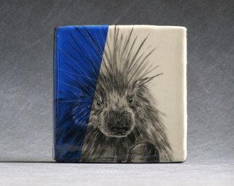 Hand Painted Porcupine Portrait Wall Tile Blue